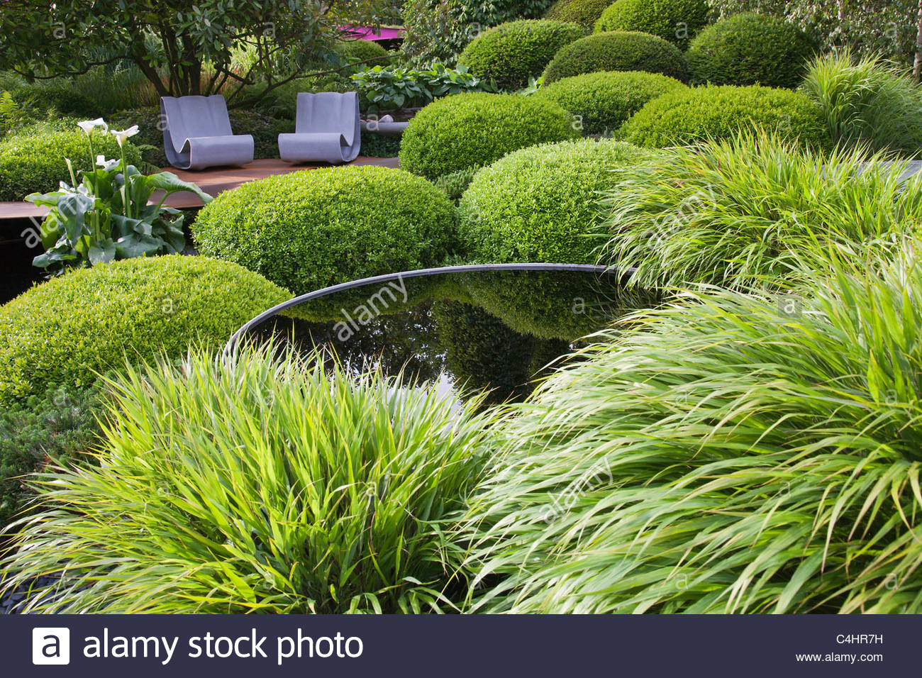 A contemporary green garden with grasses topiary box for Modern grasses landscaping