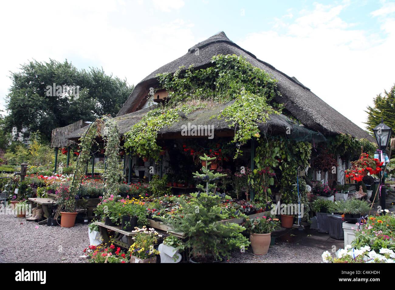 Garden Centre: Bandon Garden Centre, West Cork, Ireland Stock Photo