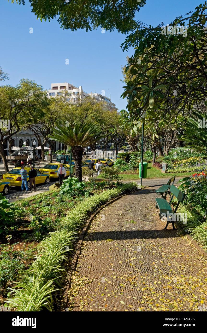 Beautiful Jardim Municipal Gardens Funchal Madeira Portugal EU Europe