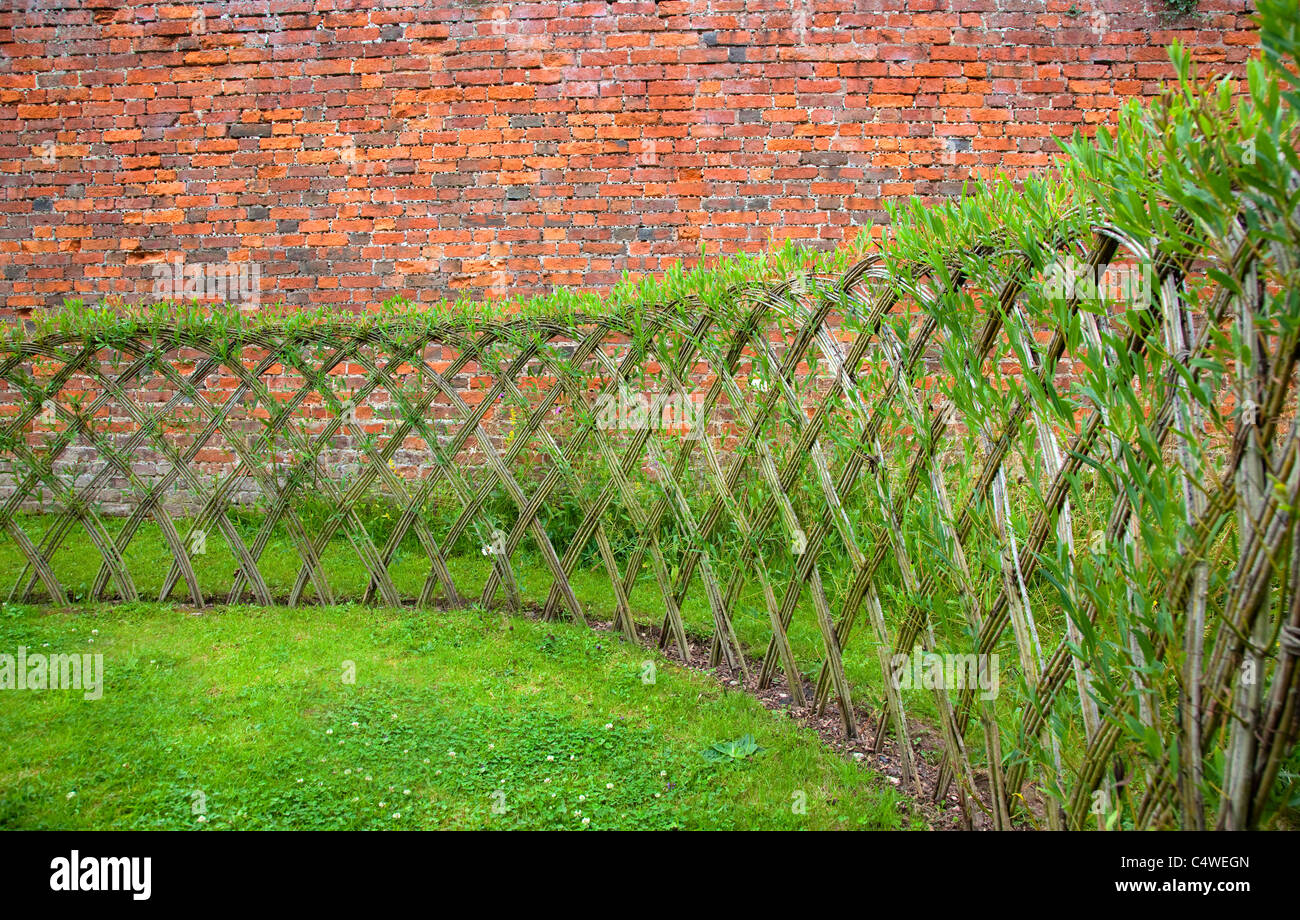 Live Willow woven screen fencing or fedge  England  UKLive Willow woven screen fencing or fedge  England  UK Stock Photo  . Living Willow Fence Panels. Home Design Ideas