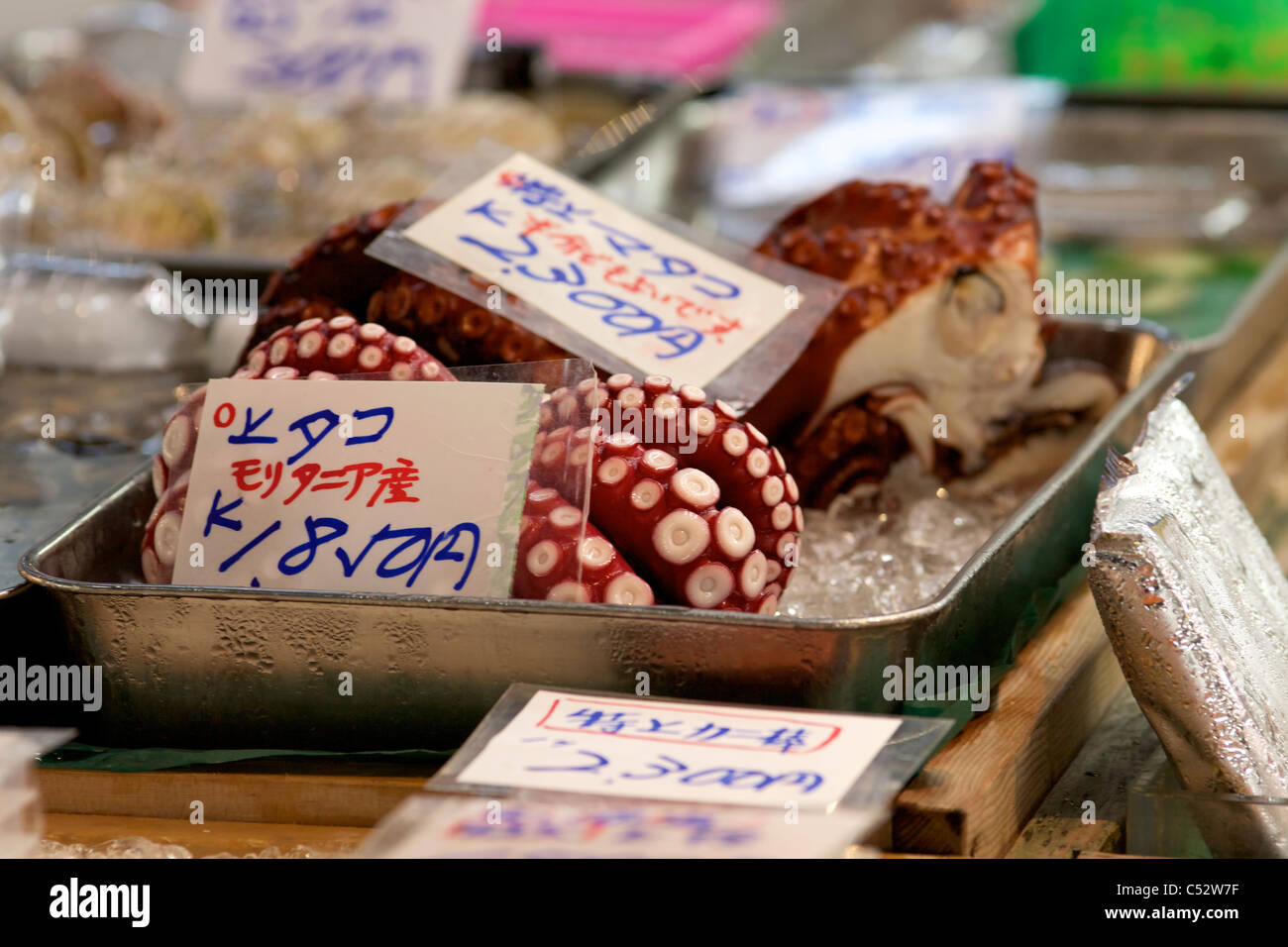 Fresh octopus for sale at tsukiji wholesale seafood and for Wholesale fish market