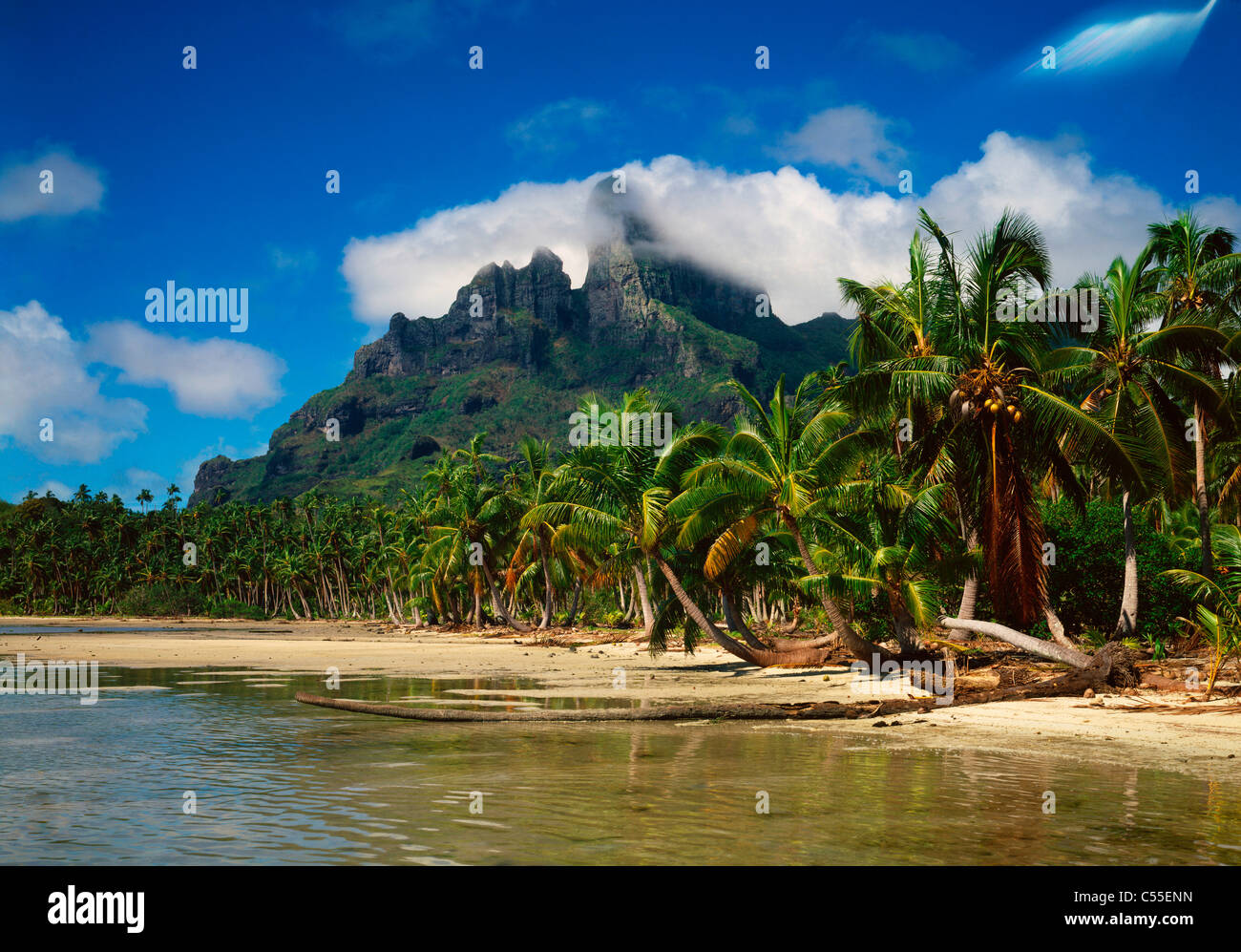 Tahiti bora bora idyllic tropical beach with mountain in for What to buy in bora bora