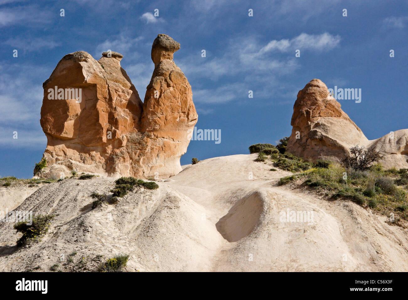 Camel Rock, Imagination Valley (pink Valley), Cappadocia ...