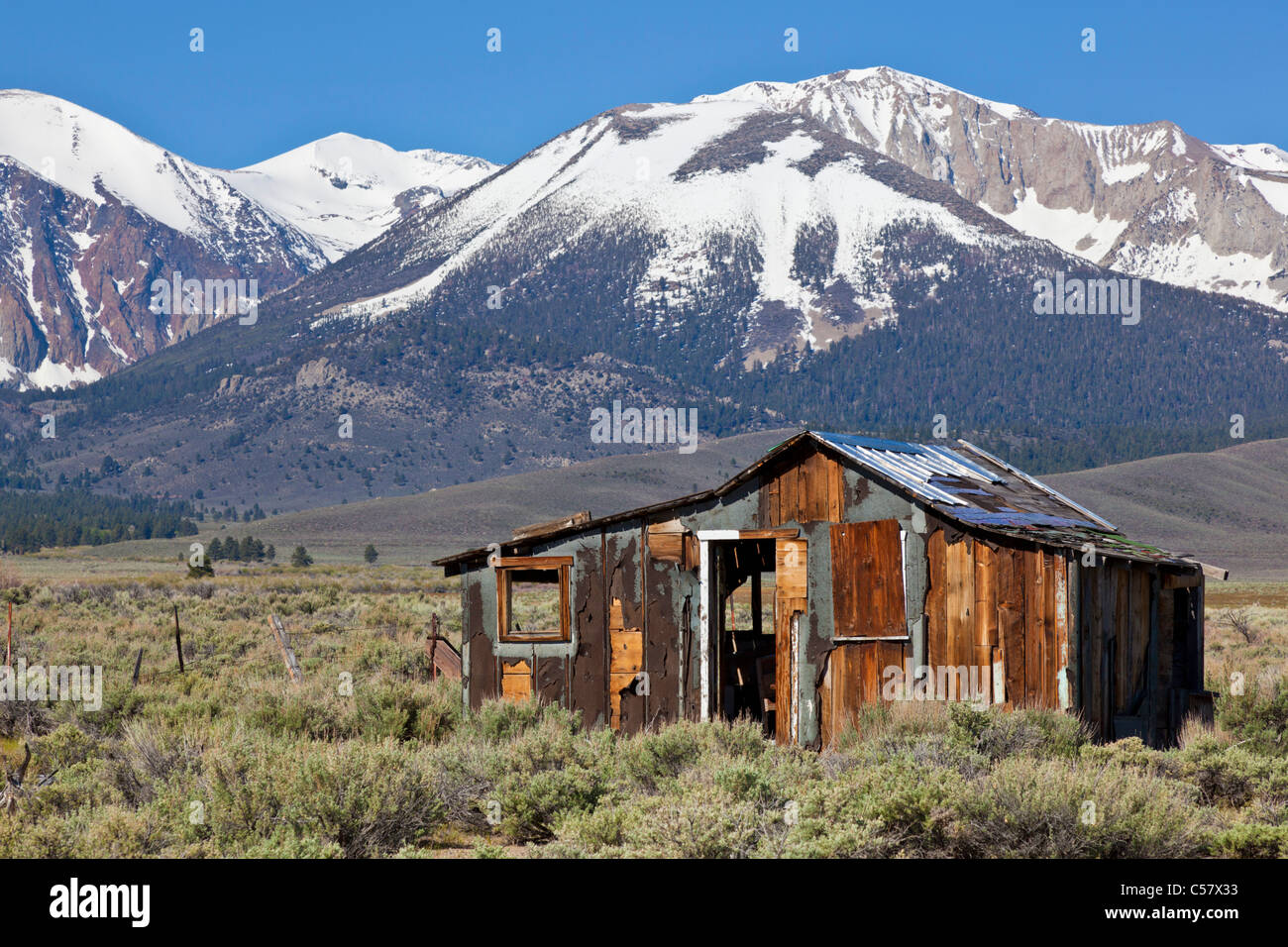 abandoned dilapidated western cabin in the sierra nevada