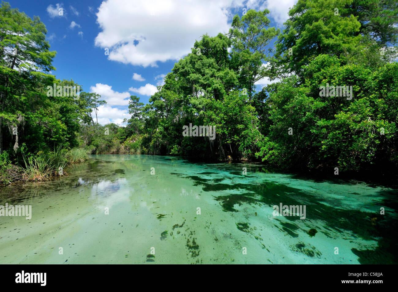 Mud Island River Park Water Park