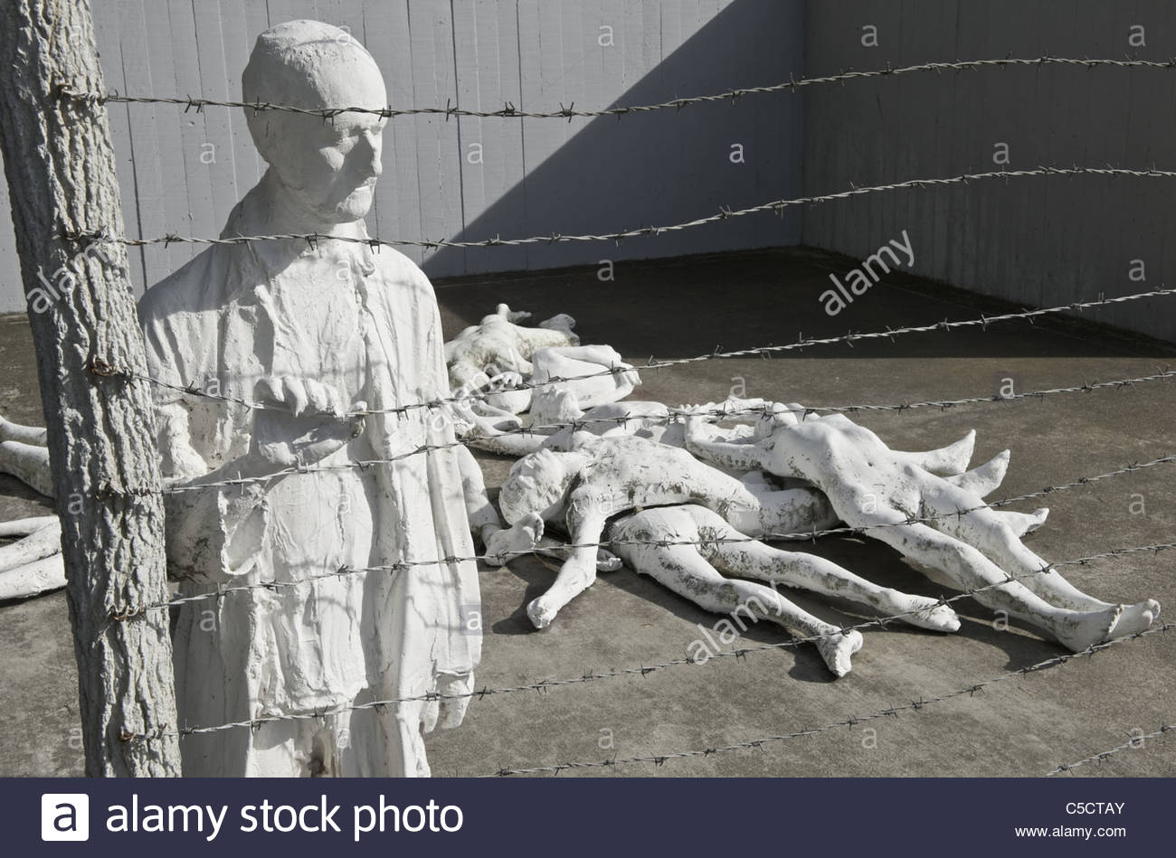 ww2 holocaust In this picture, which was made between 1941 and 1943, and granted the paris holocaust memorial, a german soldier aims at ukrainian jew during a mass execution in vinnitsa.