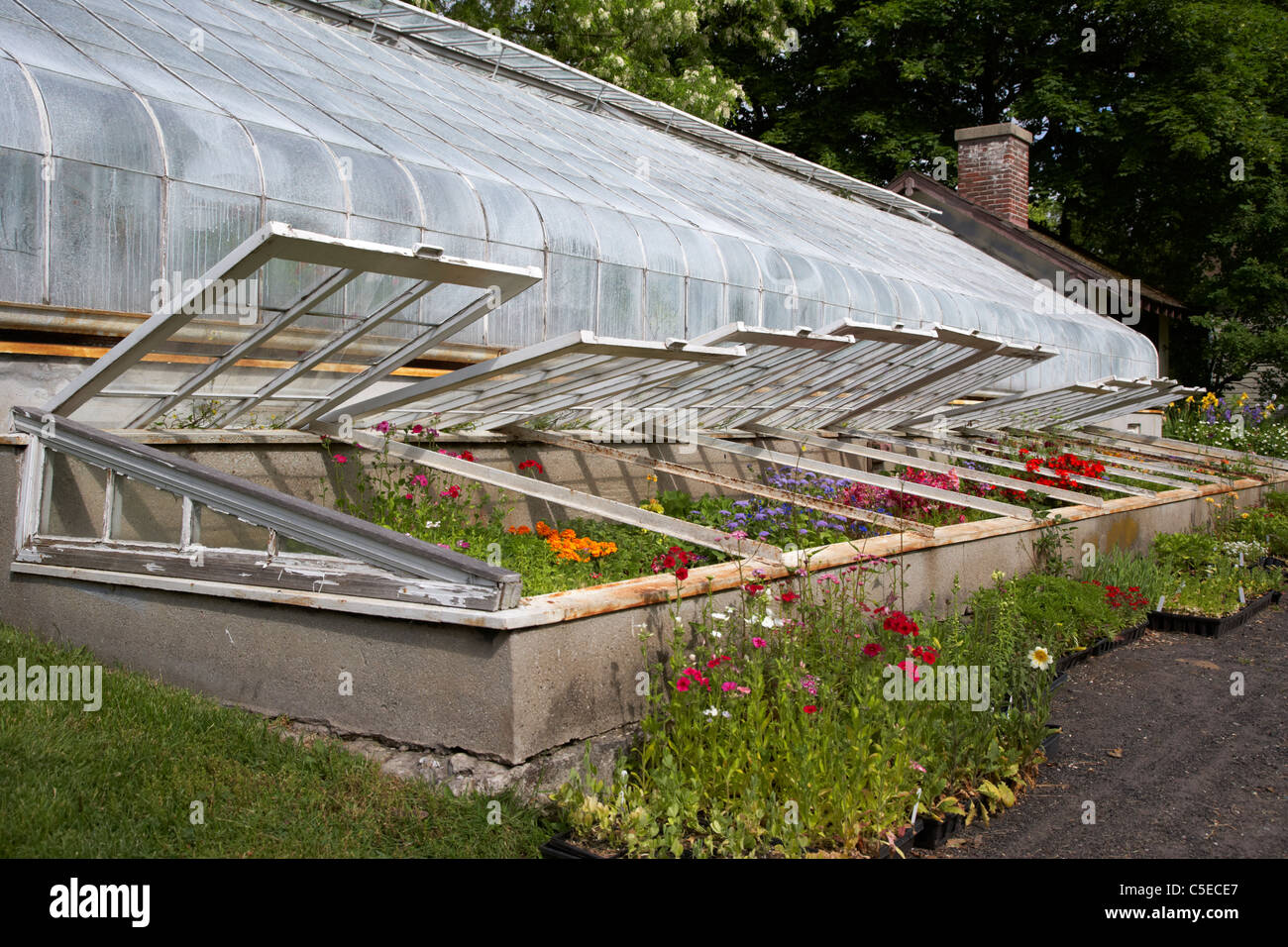 Cold house greenhouse