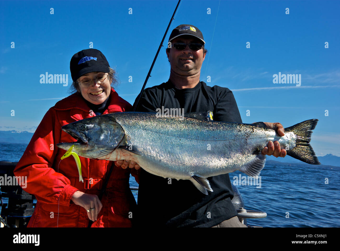 We have in stock frozen salted minnows year round - Female Sport Fishing Guide Holding Big Chinook Salmon In Open Pacific Ocean West Coast Vancouver Island
