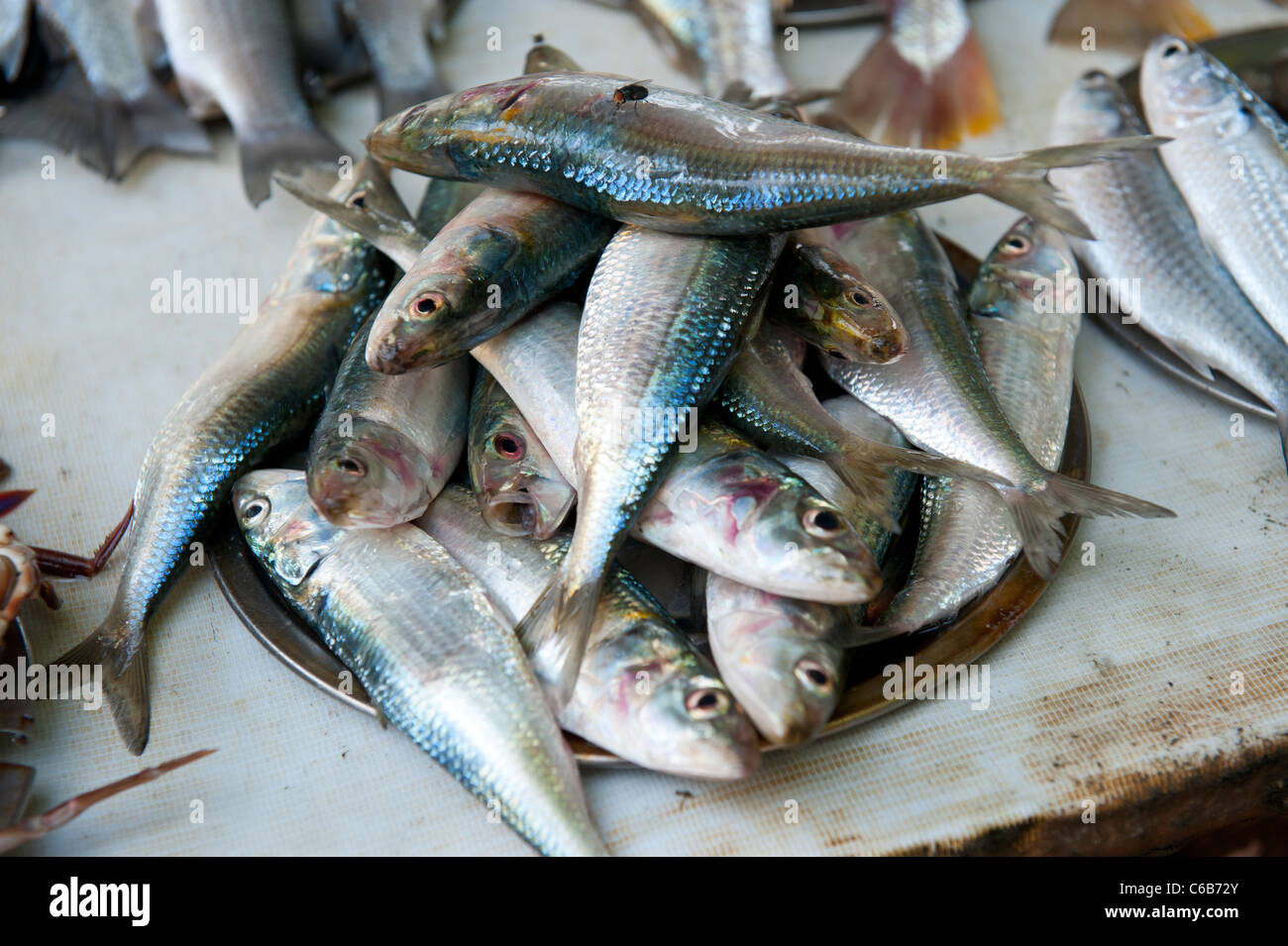 Freshly caught fish on a market stall near the chinese for Chinese fish market near me