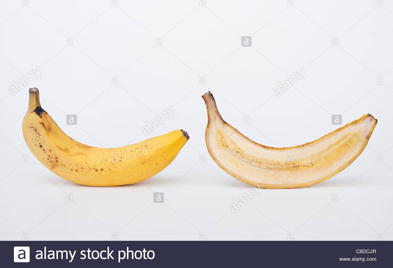 ill trade you my banana for Banana cultures : agriculture, consumption, and environmental change in honduras and the united states  xiii, 321 p : ill, maps  24  banana trade  social.