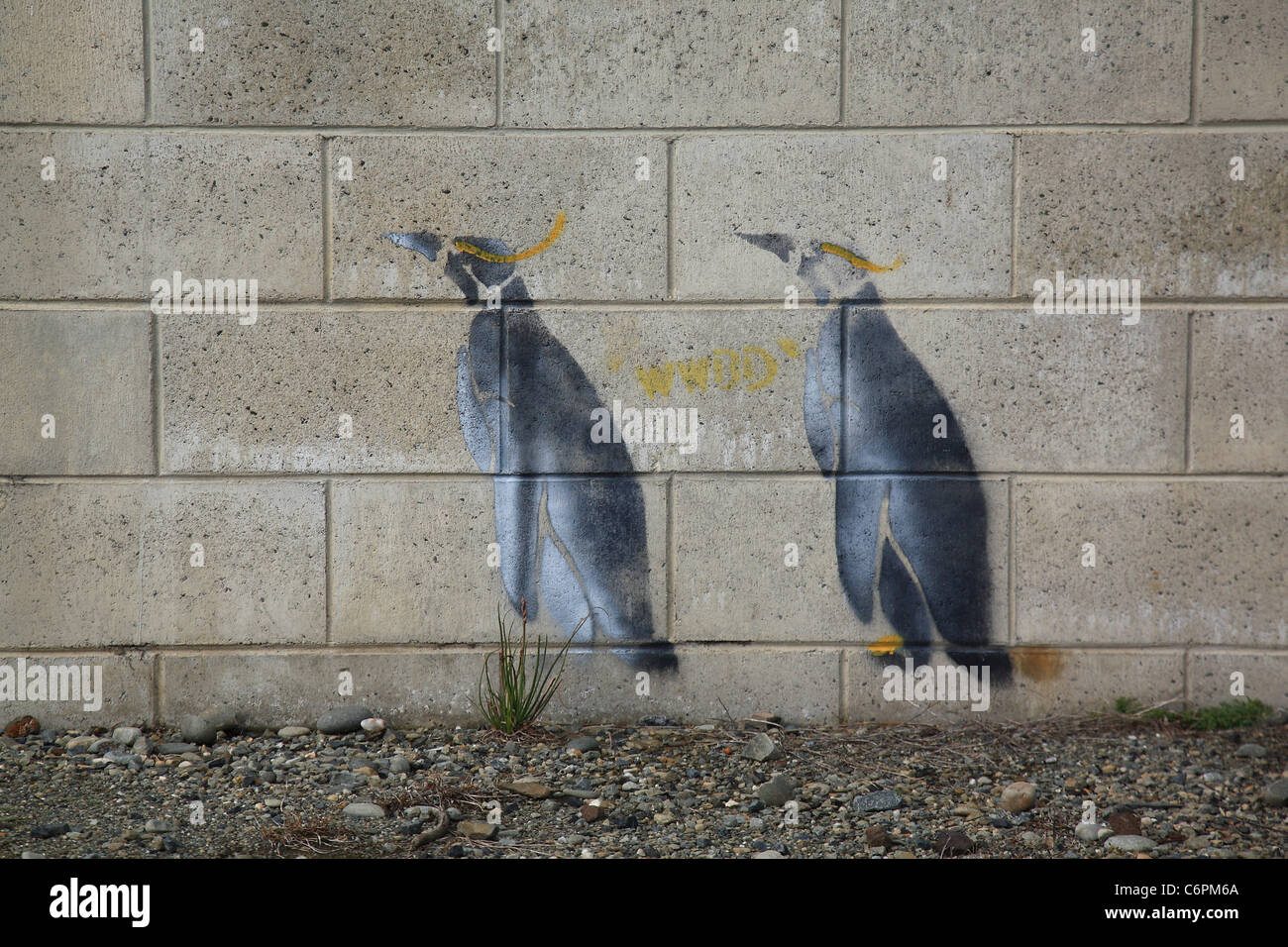 little blue penguins painted on the side of an old