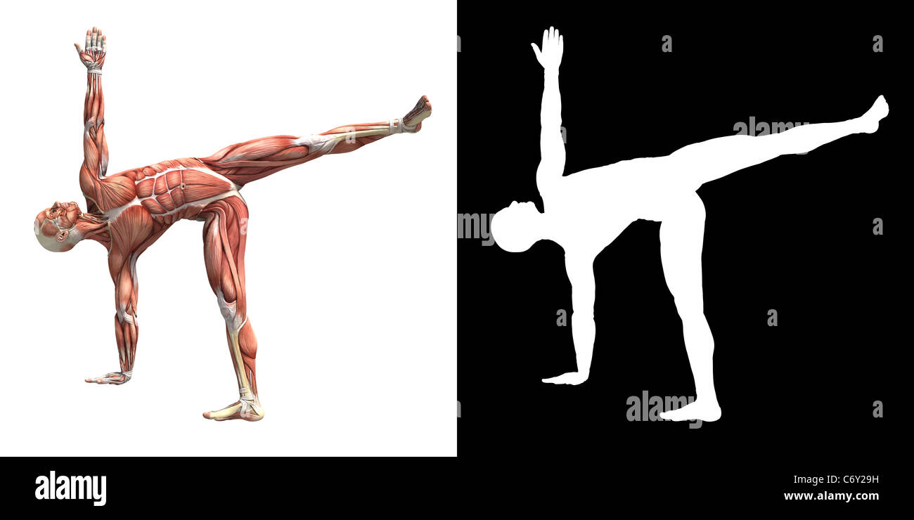 yoga poses with pictures and instructions