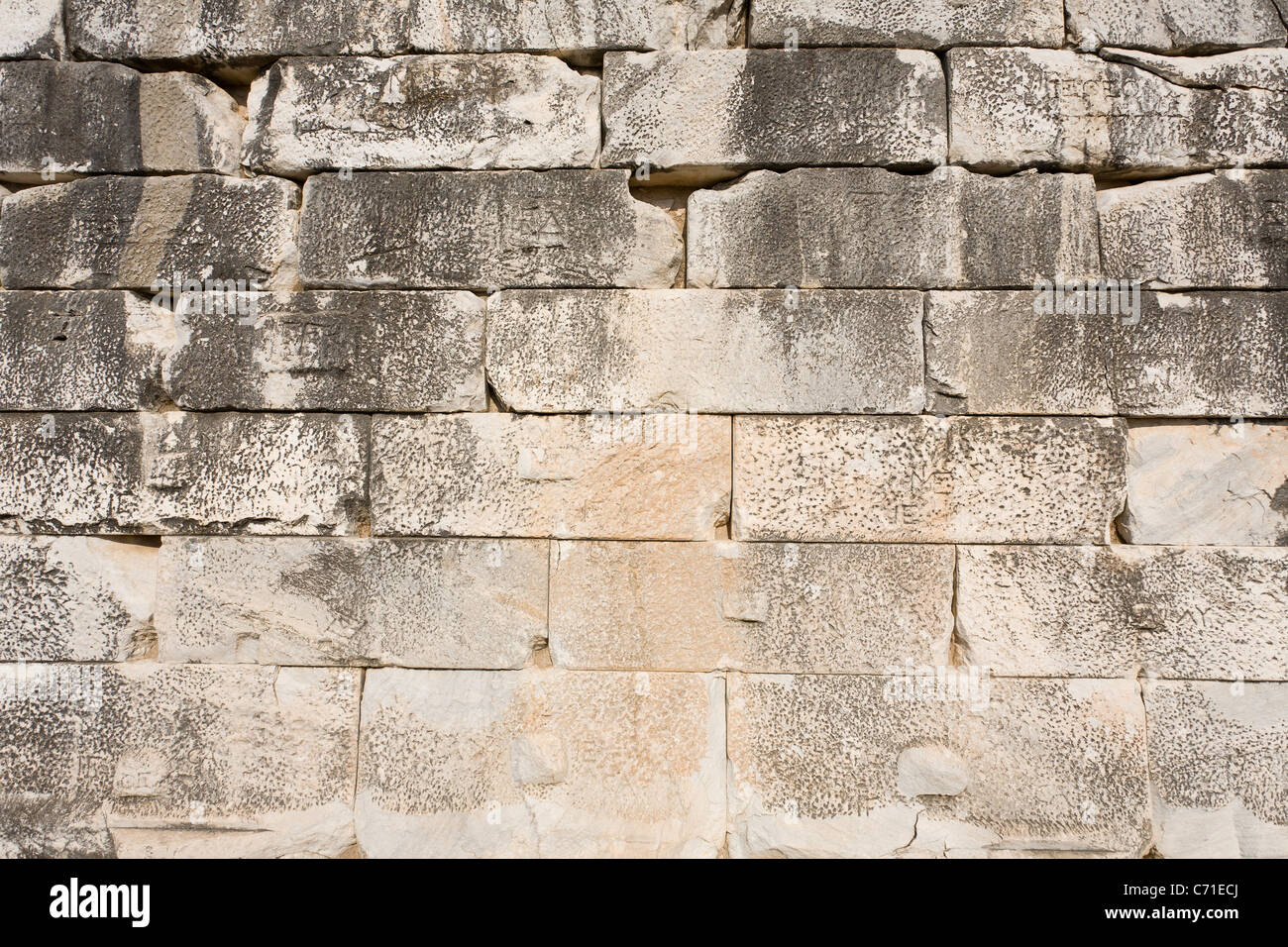 Homemade Temple Block ~ Temple wall details of the huge white and grey stone