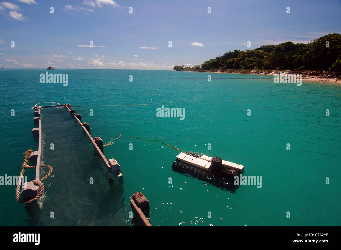 Coconut Island Queensland: Jetty Underwater During King Tide At Poruma Island (aka