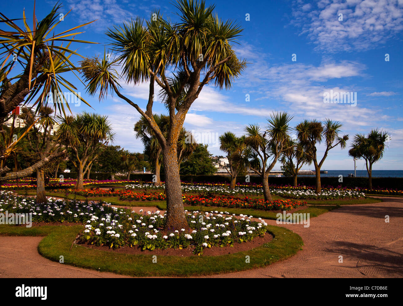 Palm trees in the beautiful gardens on the seafront on for Garden trees england