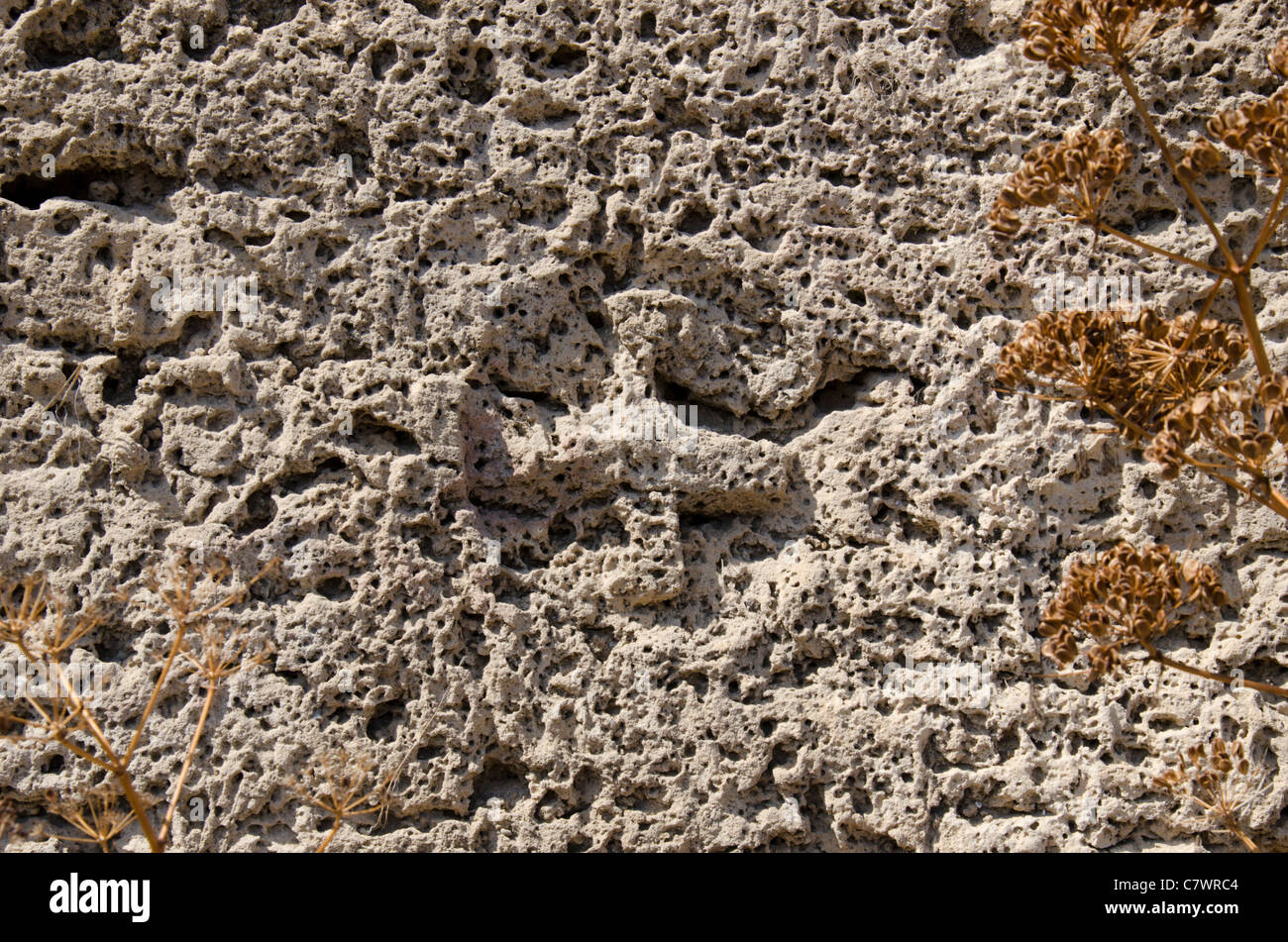 Ancient swastika symbol in the rock face in the necropolis at ancient swastika symbol in the rock face in the necropolis at ancient lambousa in north cyprus by the side of a rock cut tomb buycottarizona