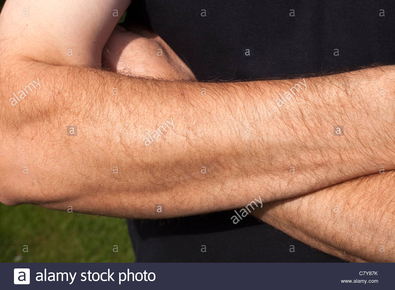 Hairy Arms Man 68