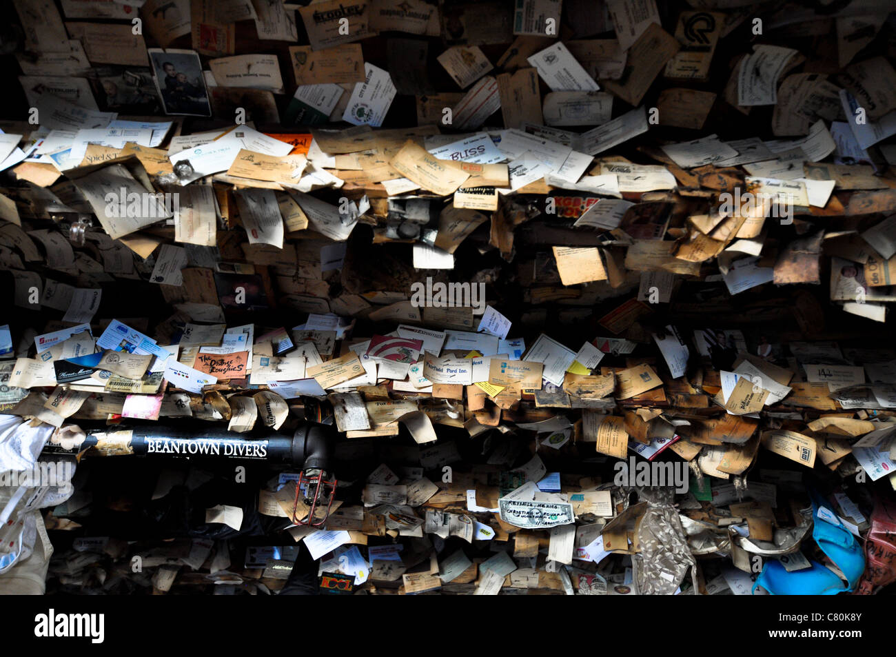 Captain Tony\'s Saloon Ceiling Covered in Business Cards - Key West ...