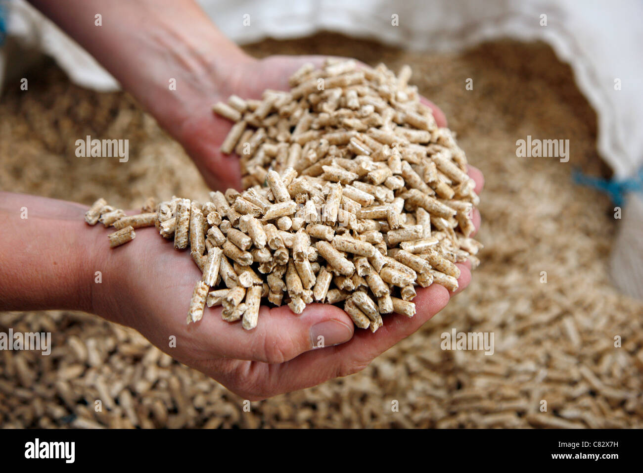 Types Of Wood Pellets ~ Production of wood pellets a type fuel sawdust