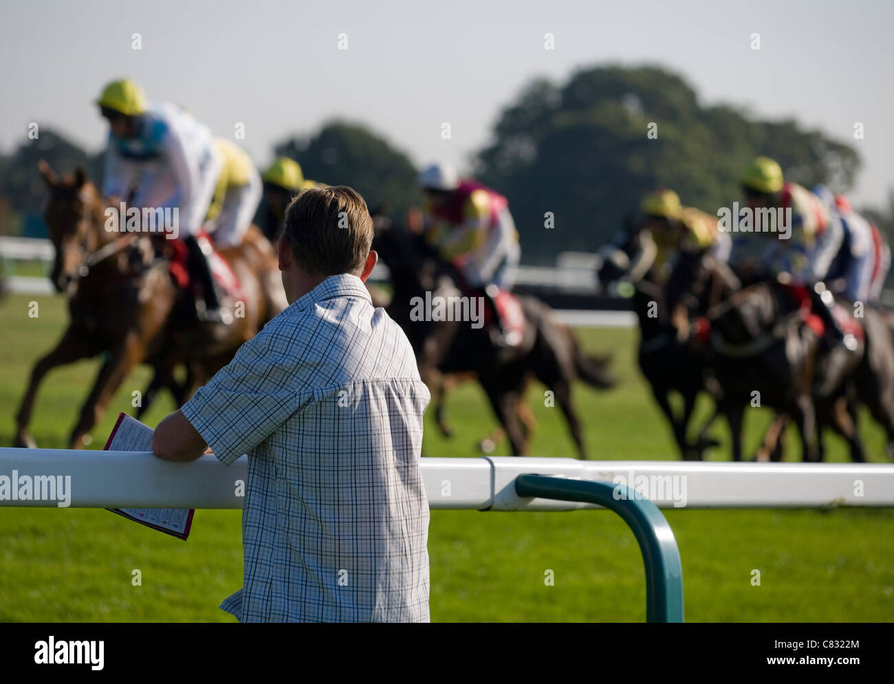 Gamble gambling horse ing racing uk is it possible to make a living gambling