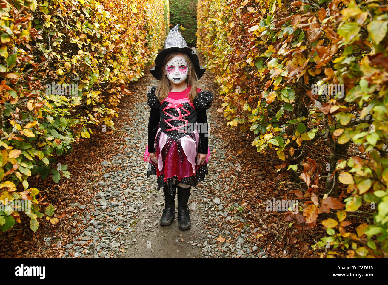 Little girl with face painted and in fancy dress witch costume at ...