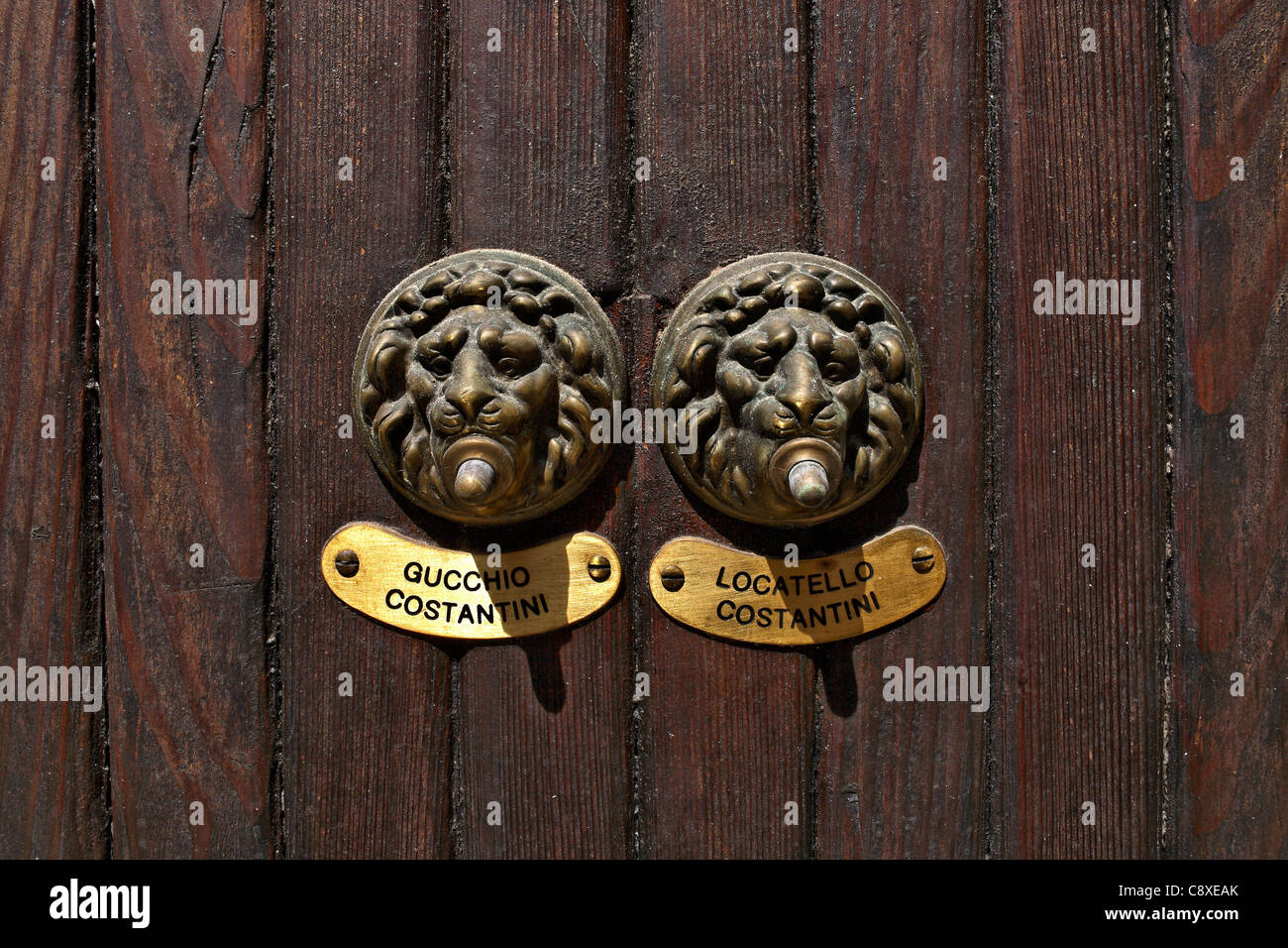 Brass Lion Head Door Bells on Wooden Doors with Name Plates Venice Italy & Brass Lion Head Door Bells on Wooden Doors with Name Plates Venice ...