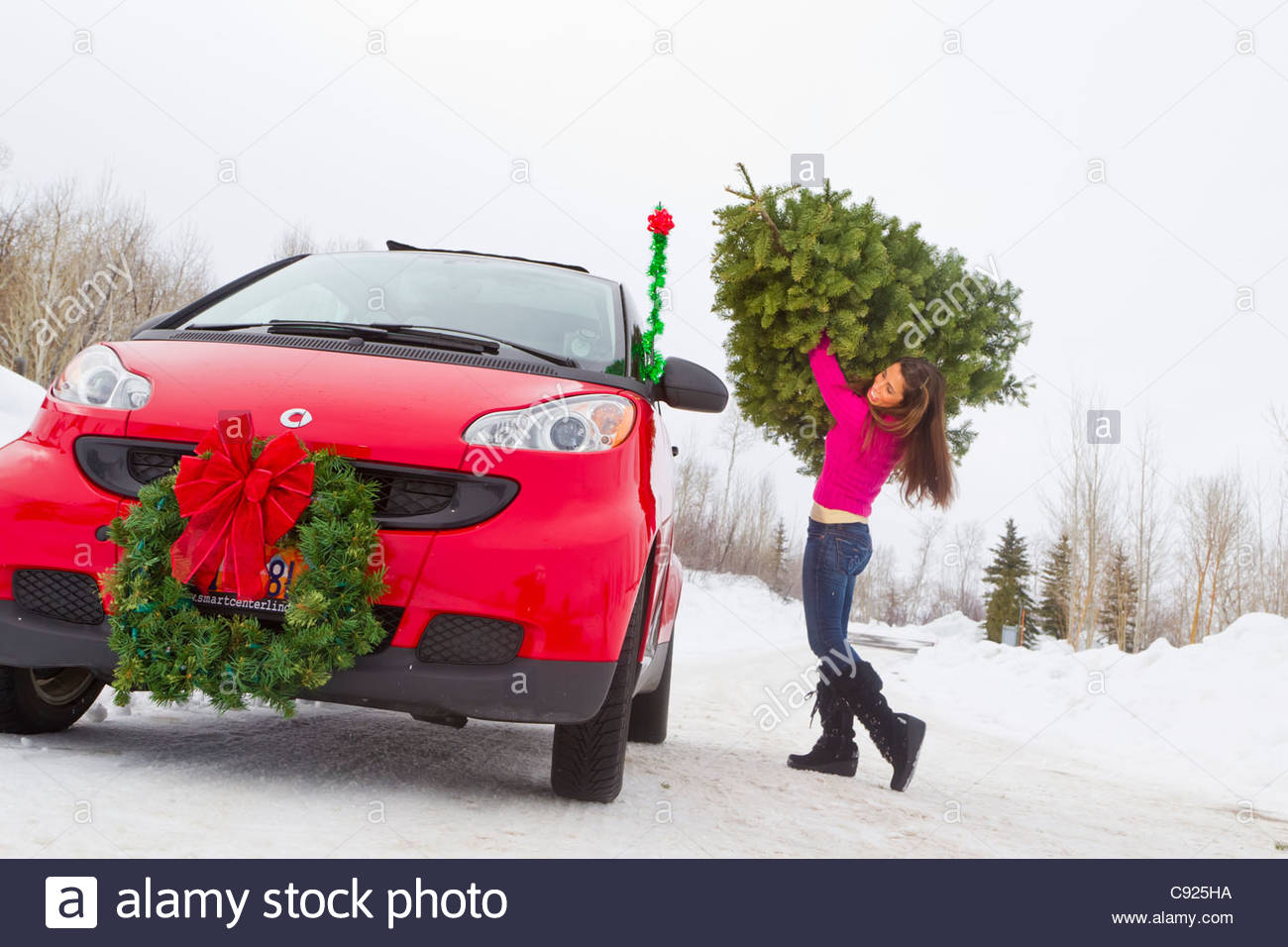 Woman Loading A Cut Christmas Tree On Top Of A Red Smart Car Stock  - Christmas Tree On Car