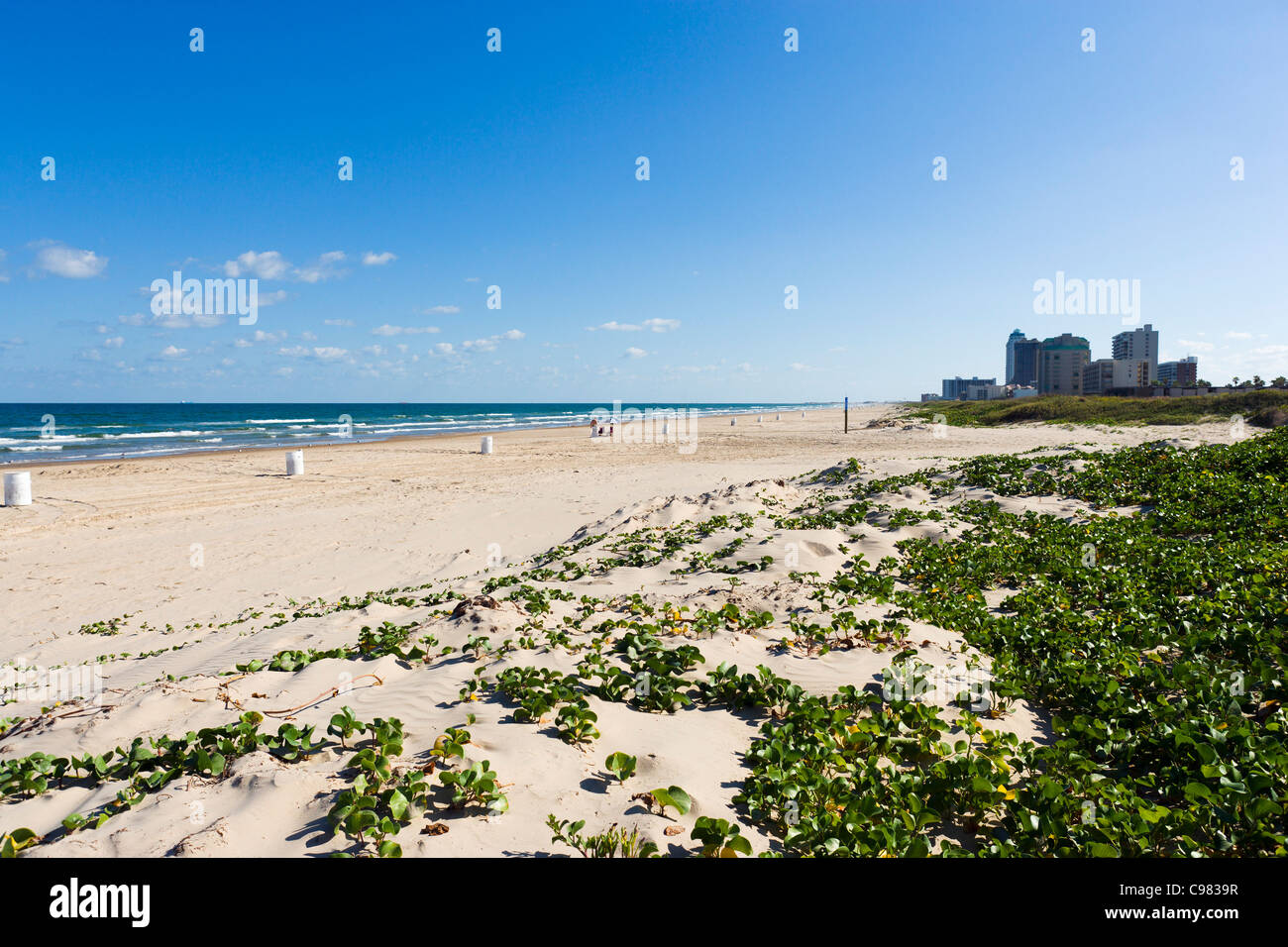 Beach At The Southern End Of South Padre Island Near