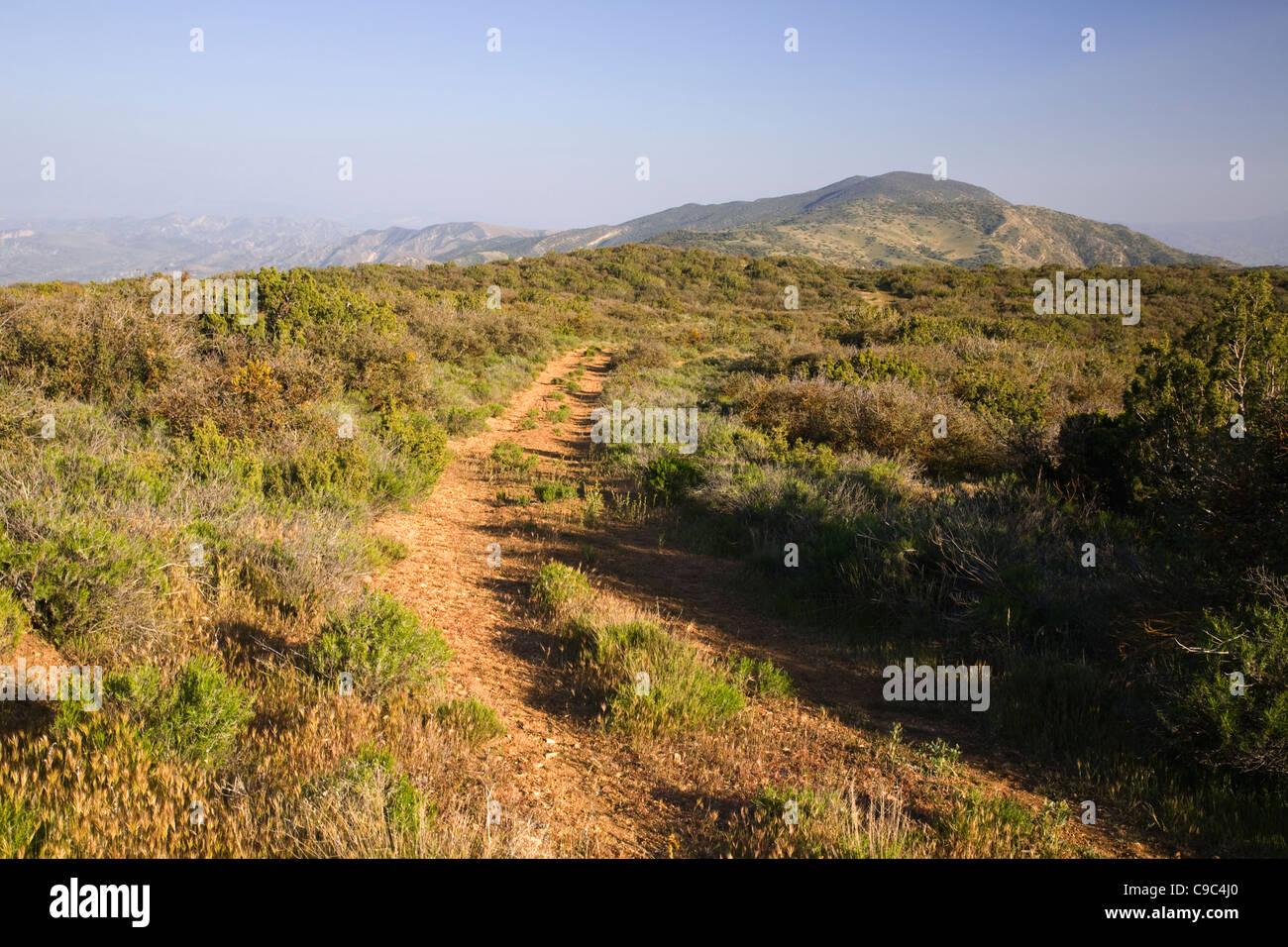 caliente-mountain-ridge-trail-running-al