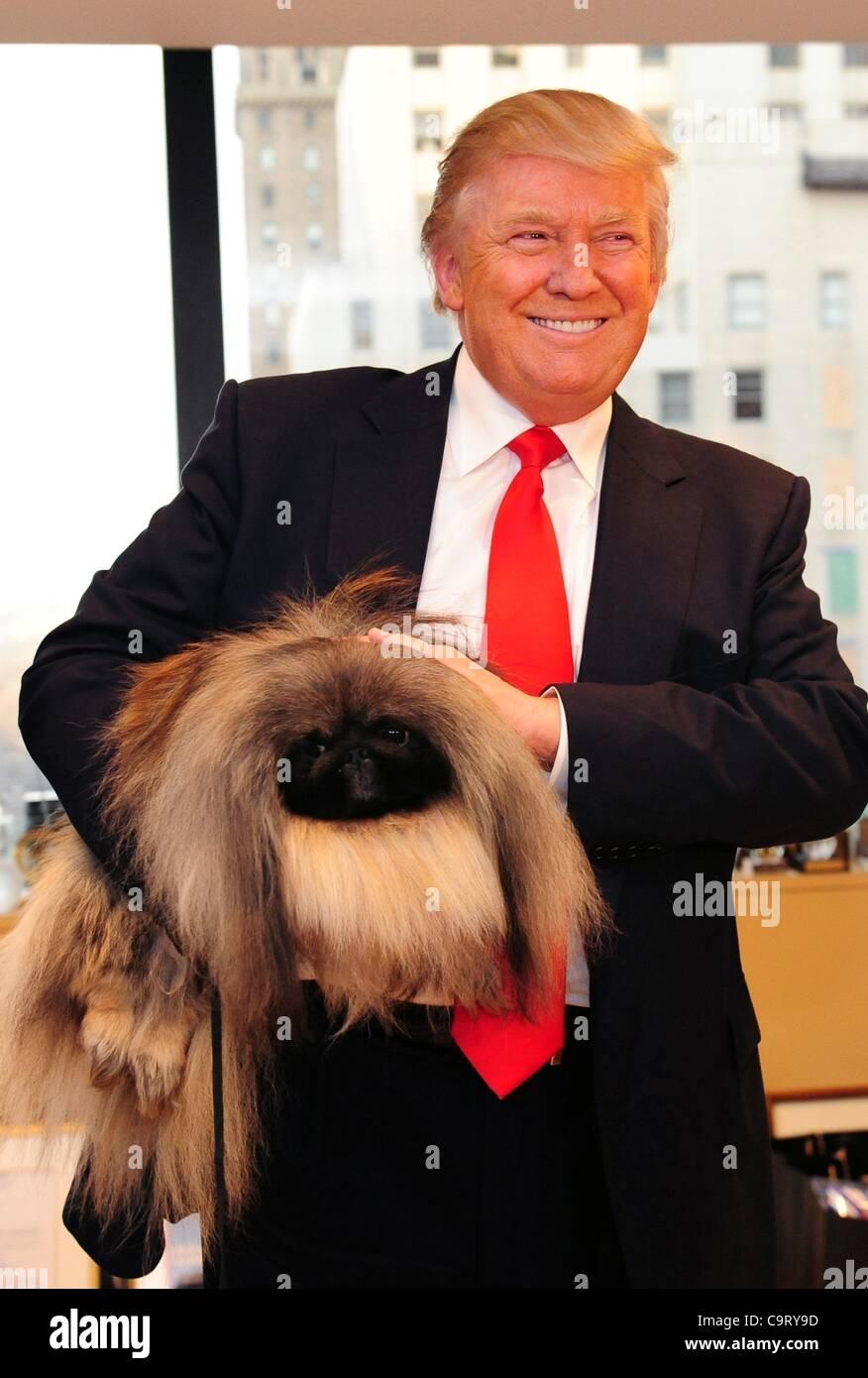 Westminster Dog Show Trump