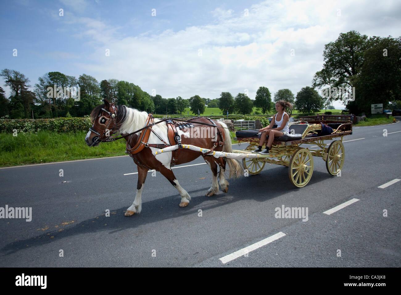Creative Family In Horsedrawn Caravan Wagon In Rural Ireland View Large Photo