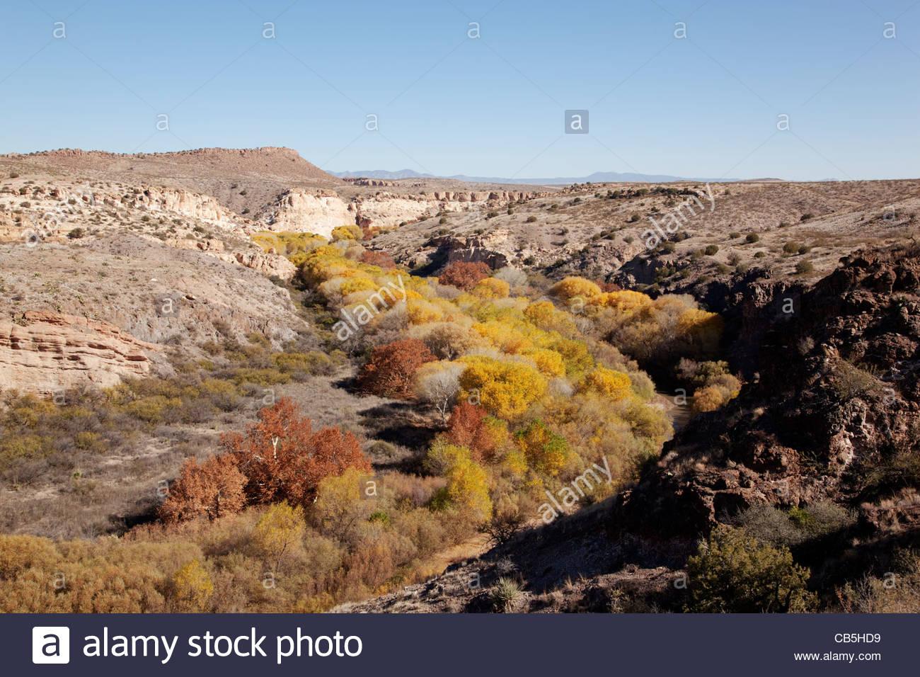 fall-colors-gila-lower-box-gila-river-new-mexico-CB5HD9.jpg