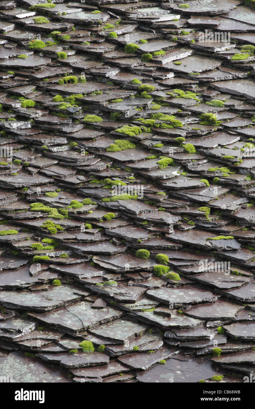 Slate Roof. Stone Tiles With Moss And Lichens On Roof. Traditional  Architecture In Bulgaria.
