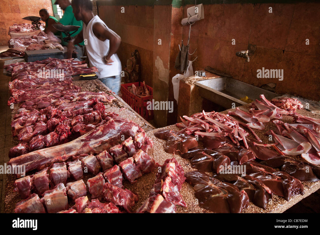 meat market stock images - photo #6