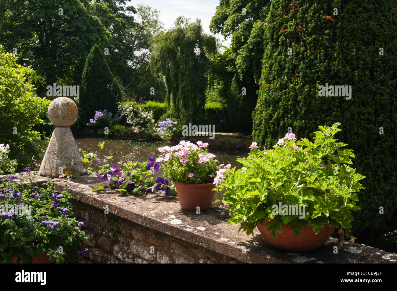 Terrace garden overlooking the ornamental pond at coton for Ornamental pond plants