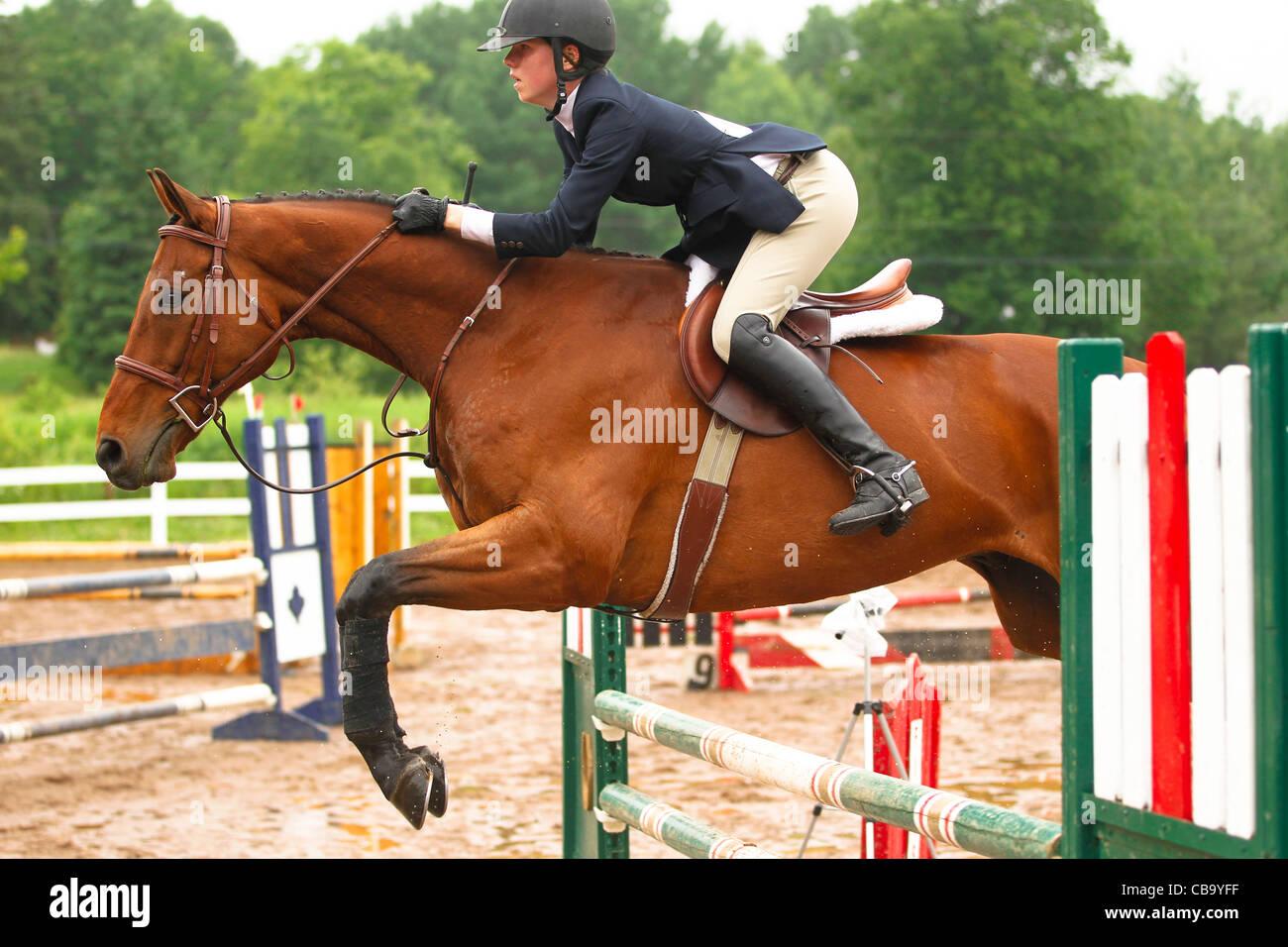 Bay horses jumping