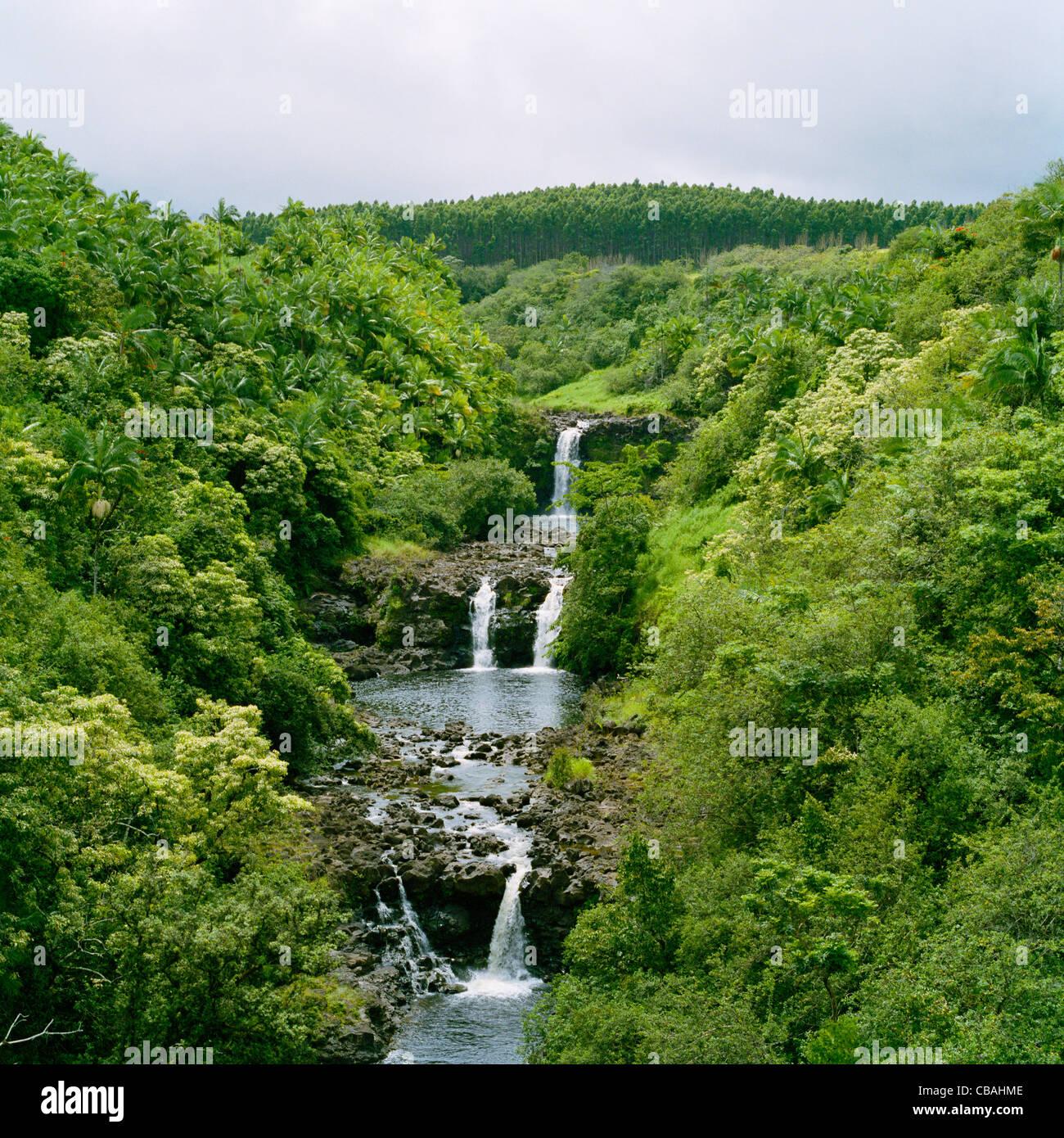 Umauma Falls World Tropical Botanical Gardens Big Island Hawaii Stock Photo Royalty Free Image