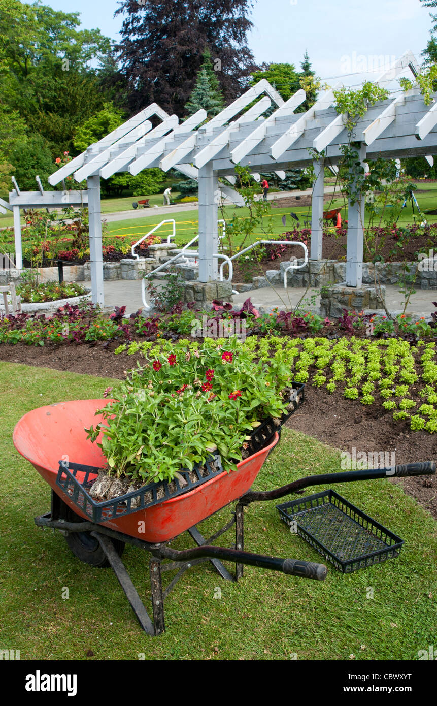 The greenhouse stanley - Stock Photo Wheelbarrow With Plants In One Of The Gardens At Stanley Park Vancouver British Columbia Canada
