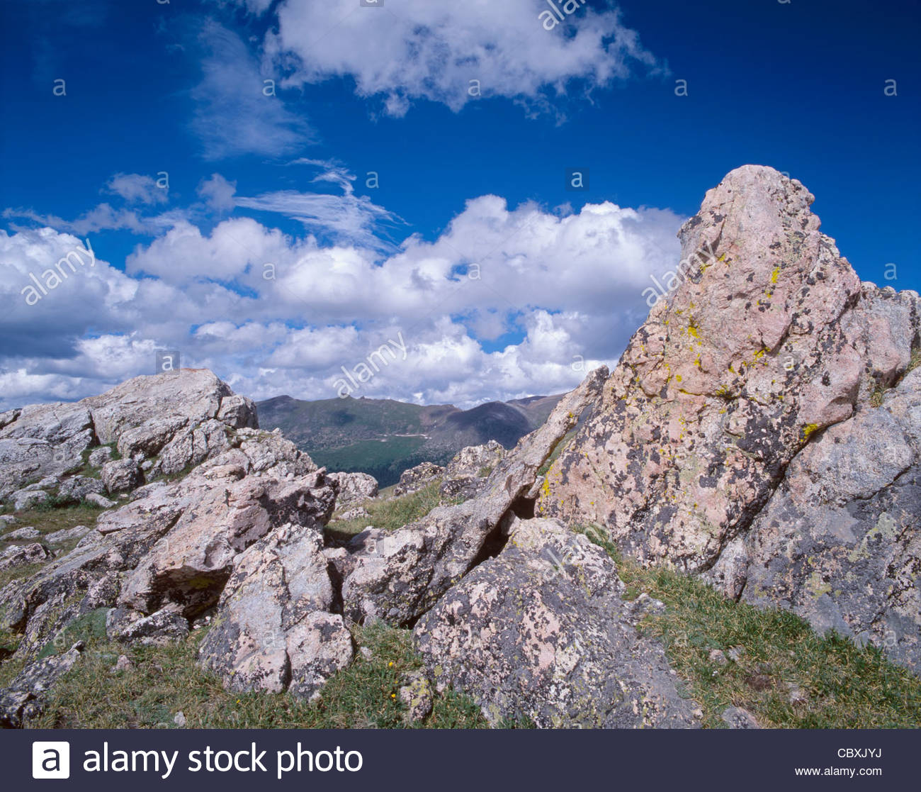 Alpine tundra and lichen covered rocks along upper portion of old alpine tundra and lichen covered rocks along upper portion of old fall river road rocky mountain national park colorado usa sciox Image collections