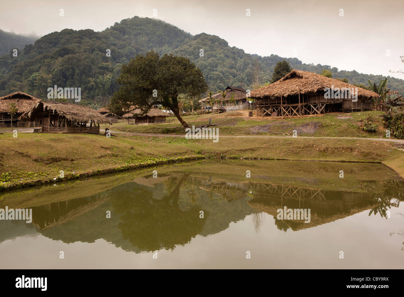 India arunachal pradesh along podbi village fish pond for Koi pond india