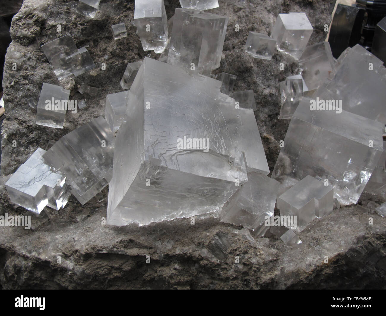 Rock Salt Crystal Cube also Called Halite, a mineral form of ...