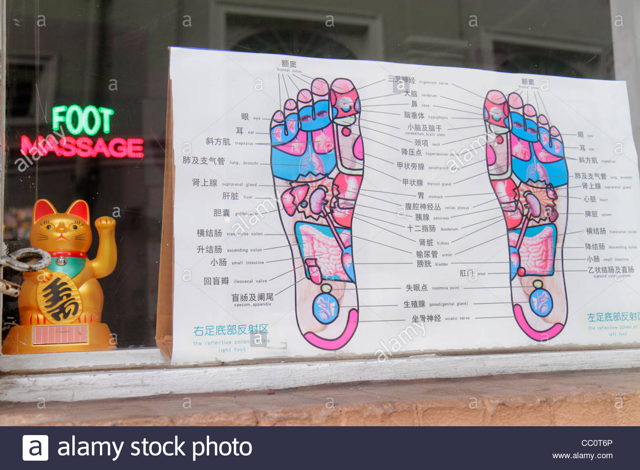 New orleans louisiana french quarter store window oriental foot new orleans louisiana french quarter store window oriental foot massage feet diagram pressure points reflective zones chinese la pooptronica