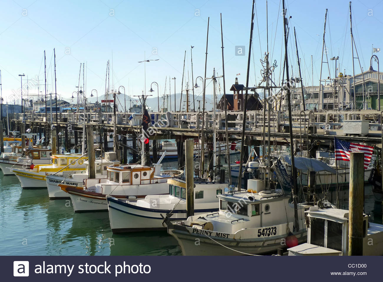 Fishing boats in fisherman 39 s wharf docks san francisco for Fishing store san francisco