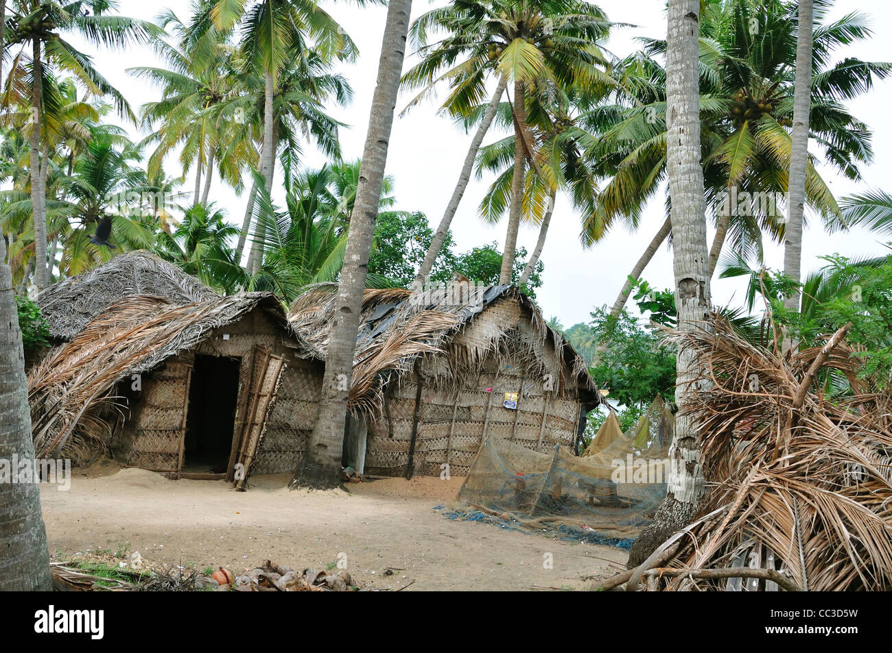 kerala village stock photo royalty free image 41872821
