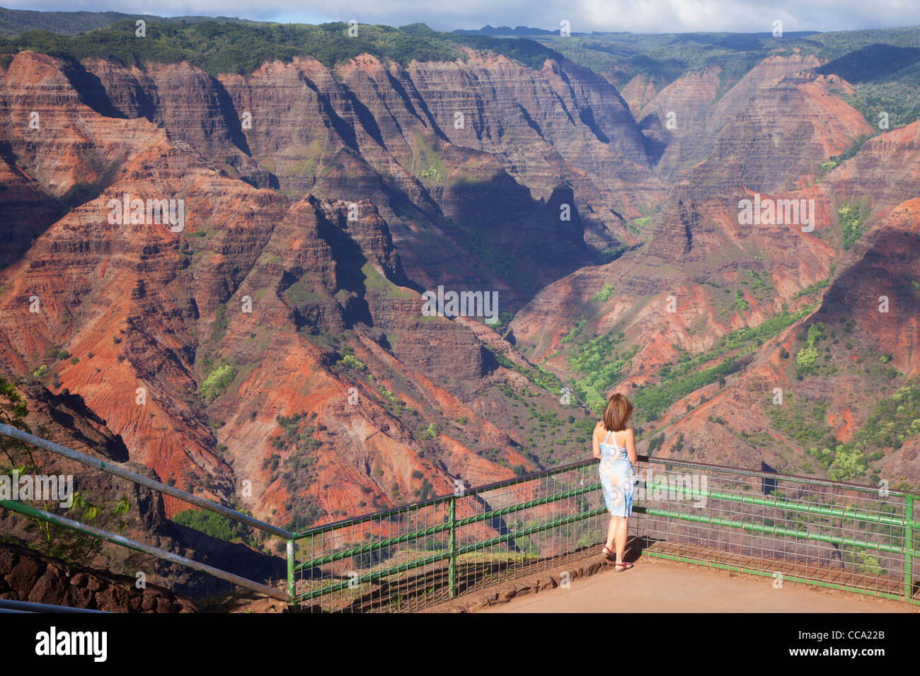 Visitor At Waimea Canyon Also Called The Grand Canyon Of