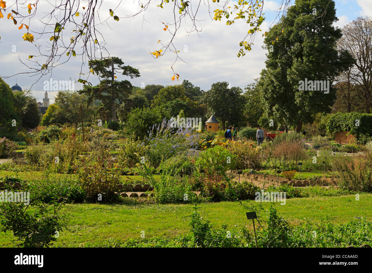 Jardin des plantes paris stock photo royalty free image for Jardin plantes paris