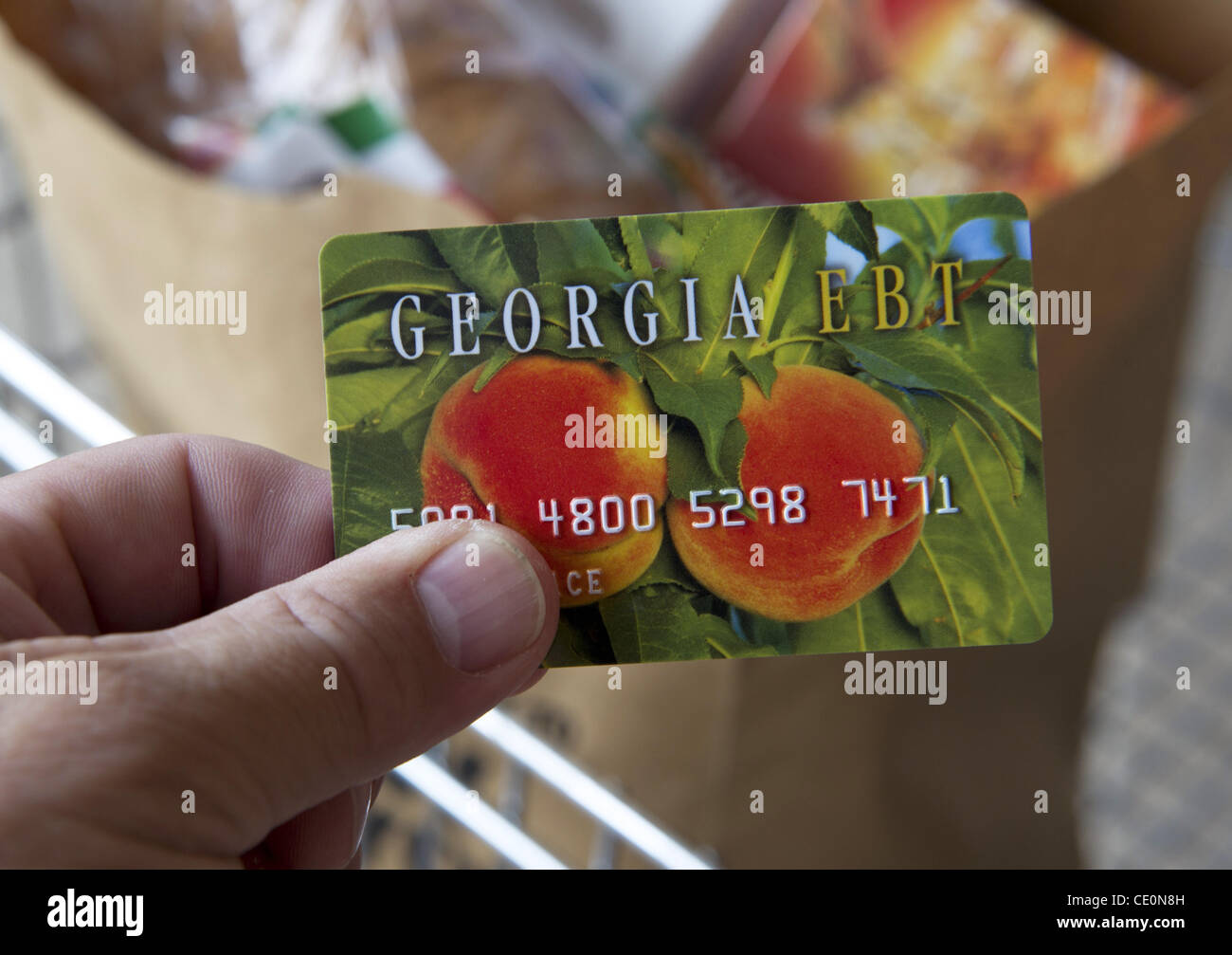 New Food Stamp Program In Georgia