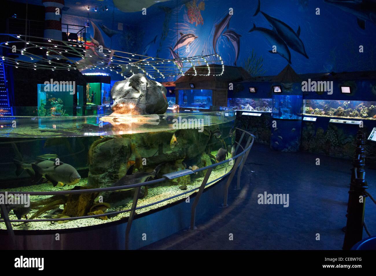 Sea World Aquariums Prague Czech Republic Stock Photo