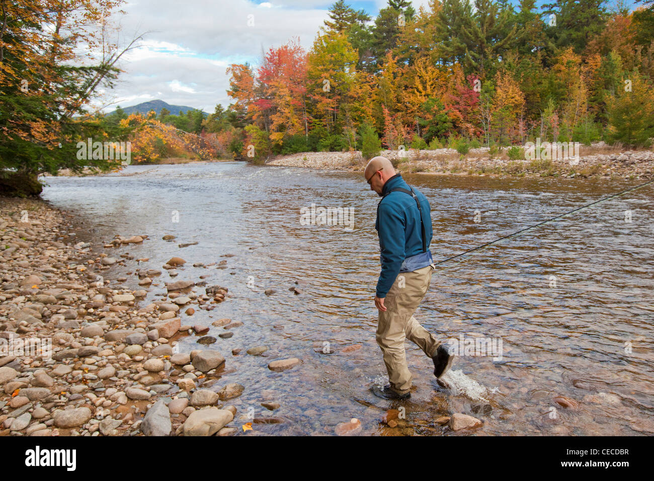 A Man Fly Fishing On The Swift River In Albany New