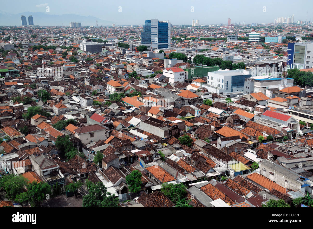 Aerial Rooftop View Crowded Houses Housing Living